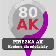 pinezka_logo